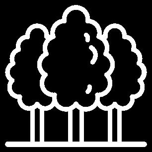 trees_icon
